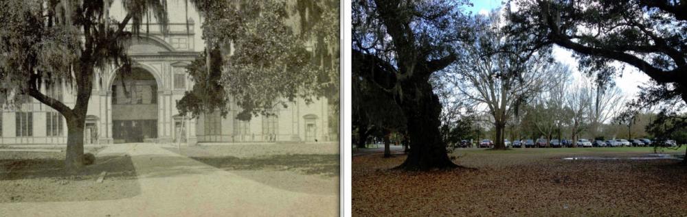 Page84-Comparison.jpg